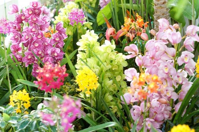 冬の花を組み込んだ祭壇