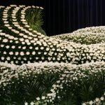 花祭壇で見送られた芸能人