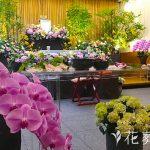 スタンダードな花祭壇とオリジナルの花祭壇の違い