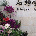 南ぬ島石垣空港のお花(2015年8月30日)