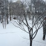 冬のご葬儀(2015年2月23日)
