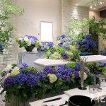 紫陽花(あじさい)で送る花葬儀