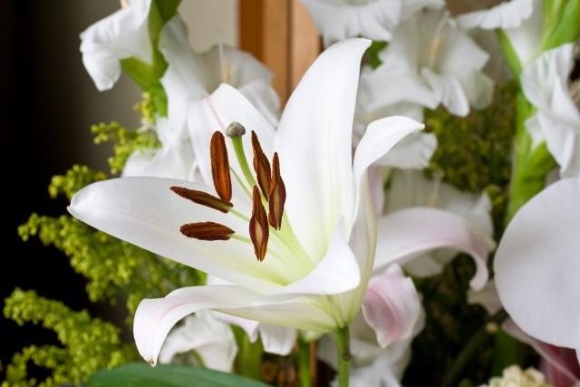 家族葬で供花は贈るべき?
